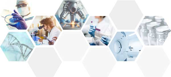 Different pictures about life sciences